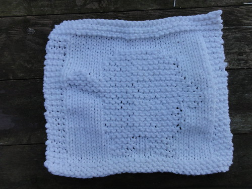 Adipose Dishcloth