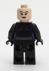 6858 Catwoman Back