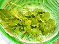 hojas de rúcula ensaladera