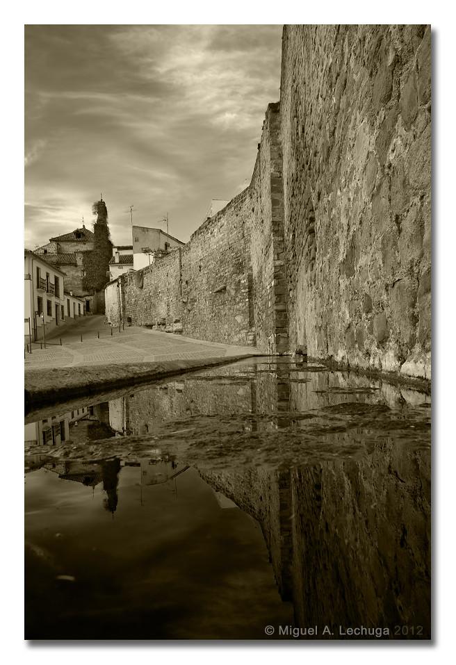 Puerta de Granada B&N