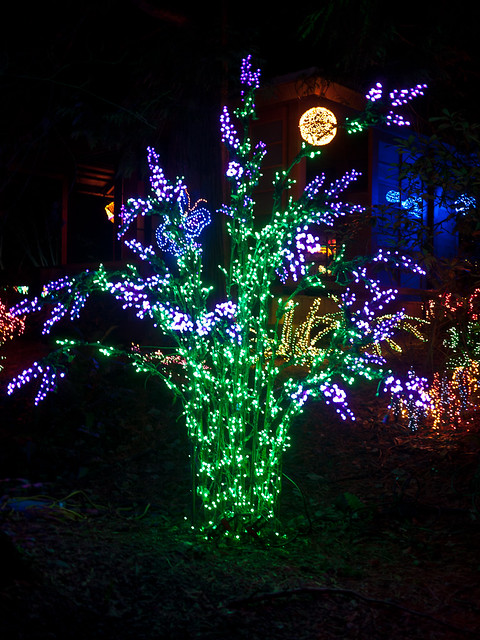Bellevue Botanical Garden Flickr Photo Sharing