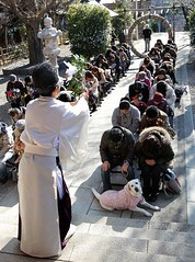 Shinto Priest Blessing