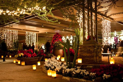 Las Noches De Luminarias My Favorite Holiday Tradition. Desert Botanical  Garden Las Noches De ...