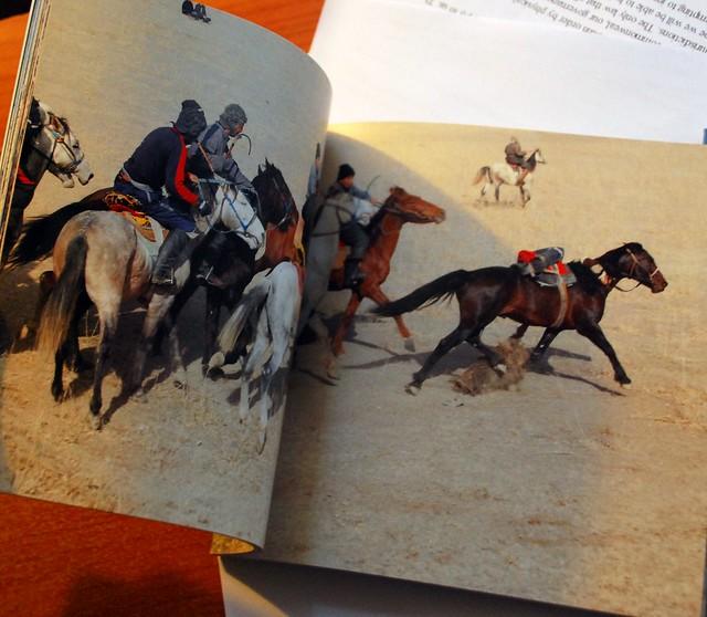 Buzkashi book
