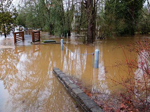 Flood-2500