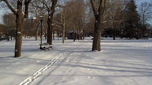 Franklin Town Common in snow