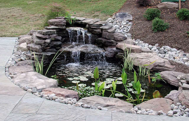 Pond pro llc frederick md pond installation services for Garden pond installers
