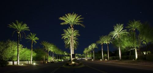 "lighting blue trees light sunset arizona sky usa tree green nature phoenix beautiful night landscape photography gold aperture nikon long exposure skies angle image time joel air wide brenner wideangle best palm frond palmtrees palmtree excellent nights scottsdale welcome 1001nights tamron stops astounding criticism scottsdaleaz iluminated criticismwelcome d5000 1024mm ""flickrawardgallery"" flickrstruereflection1 flickrstruereflection2 joelbrenner dsapeer photographystopstime"