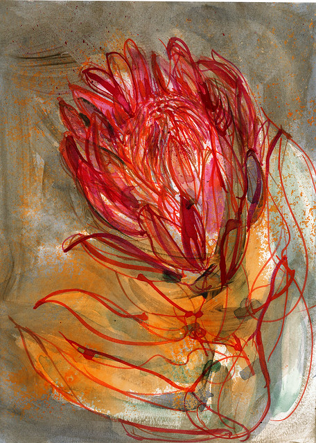 Protea in my studio