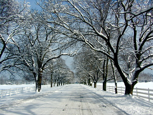 Have a great winter! Photo courtesy of Rachel Kramer via Flickr Media Commons