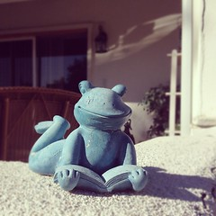 Good morning blue frog.