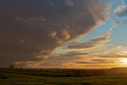 trees sunset sky cloud buckinghamshire hedge fields