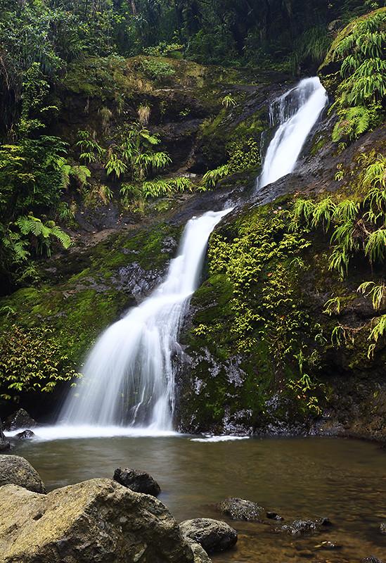 Waiotemarama Falls