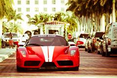 [フリー画像素材] 乗り物・交通, 自動車, フェラーリ, フェラーリ エンツォ ID:201202100000
