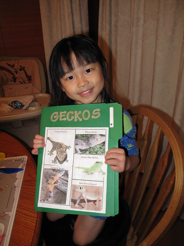 Goofy Gecko