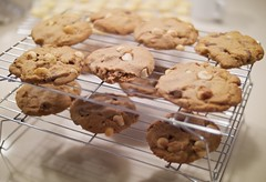 macadamia chocolate chunk cookies