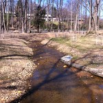 Sherwood Forest Stream Restoration