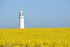 Flamborough Head Lighthouse by Michael Elleray