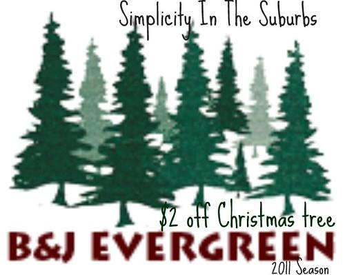 BJ Evergreen Coupon 2011