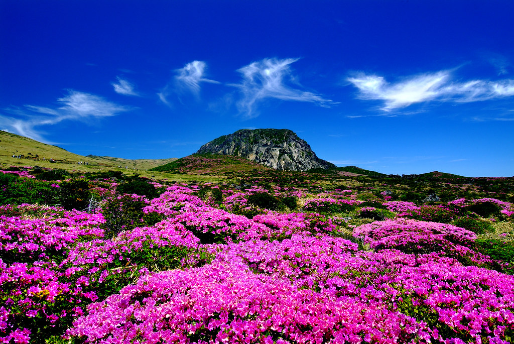 Halla Mountain in Jeju-do