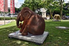 Elephant Parade - Not Forgotten