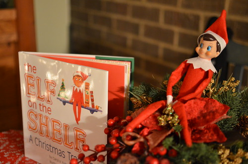 Elf on a Shelf 025