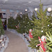 Santa's Grotto at Sandwell Park Farm by sandwellcouncil