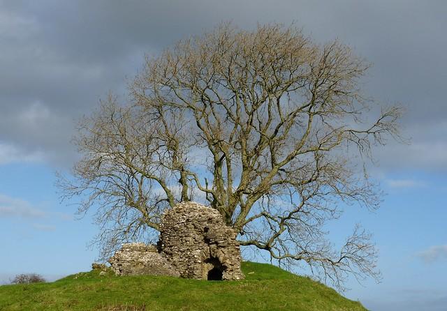 25390 - Dryslwyn Castle