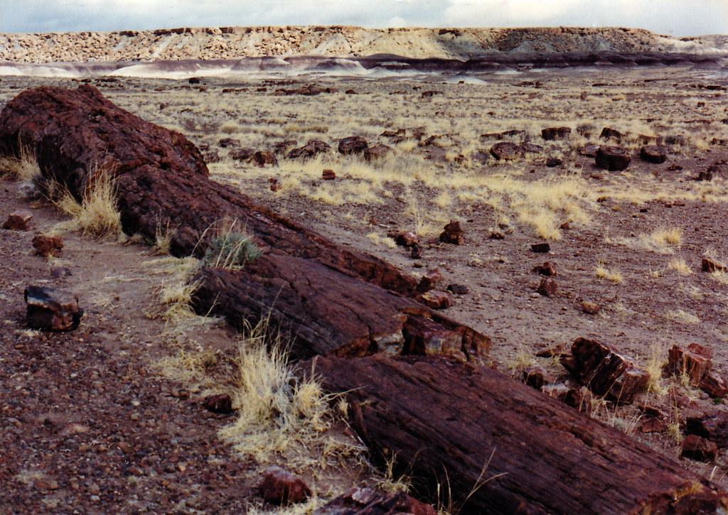 1990, Petrified Forest/Painted Desert, Arizona