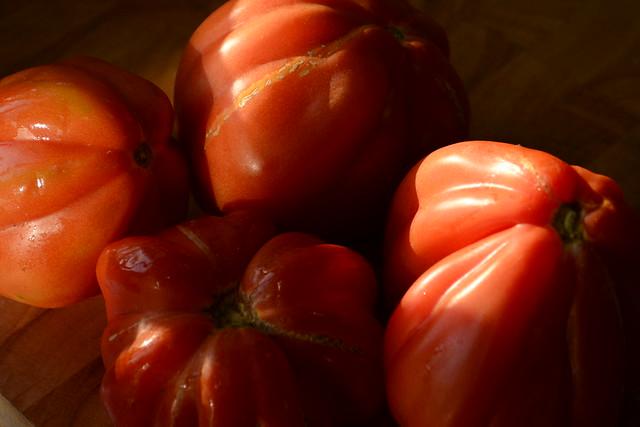 Tomates Coeur de bouef