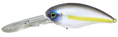 Chartreuse Shad Muscle