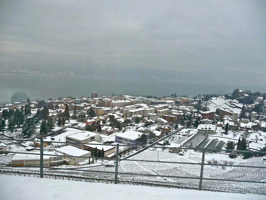 Train from Saanen to Vevey