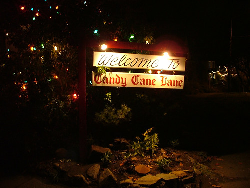 Welcome to Candy Cane Lane
