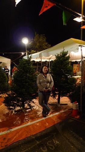 王姊姊帶路 教你第一次選購聖誕樹就上手