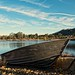 Small photo of Rowboat by Almaden Lake