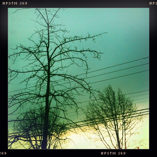 trees sky sunrise parkinglot random branches wires poles somerspoint iphone iphonehipstamatic pistilfilm melodielens