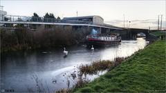 Sailing Past Louisa Bridge