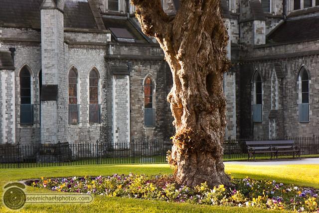 Dublin © Michael Klayman-012