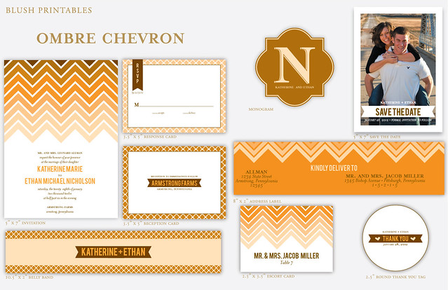 suite1Ombre Chevron Wedding Set