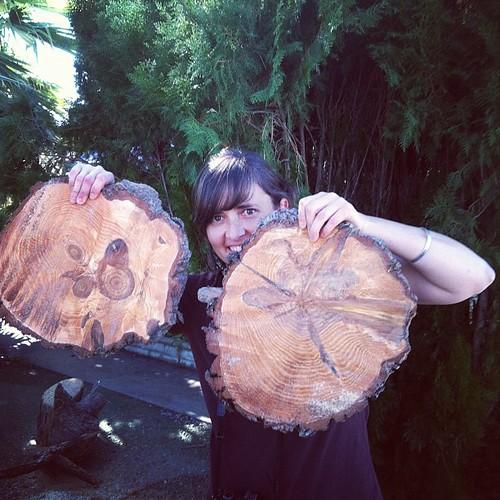 stump art!