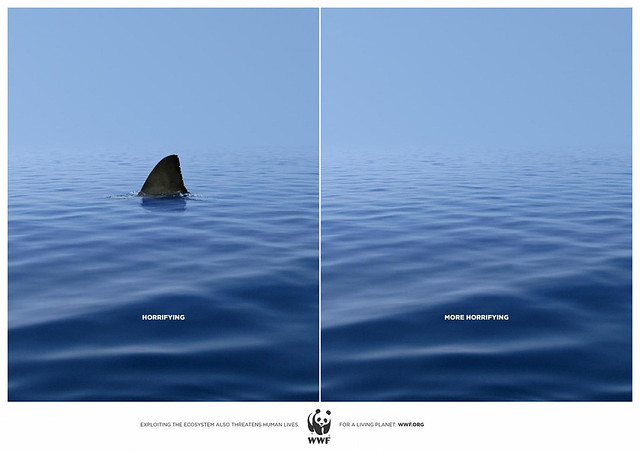 WWF World Wildlife Fund Ad - sharks are much more likely to be killed by humans than the other way round