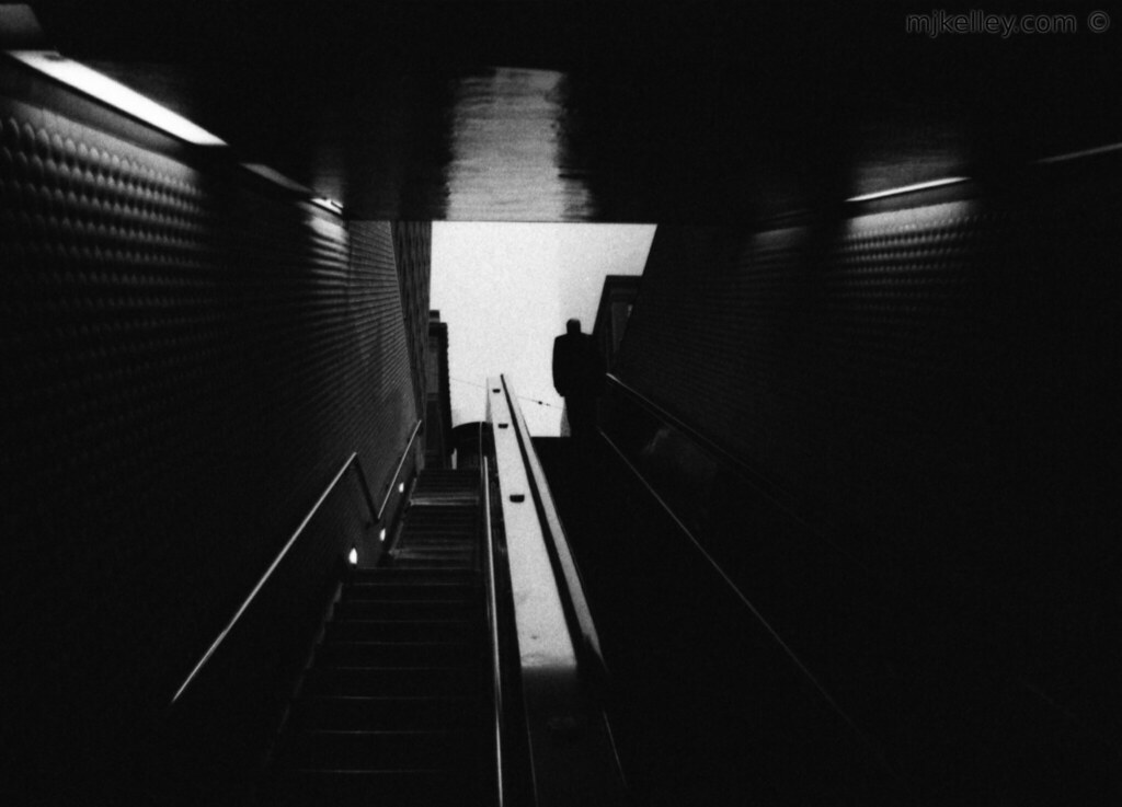 Escalator to Fog