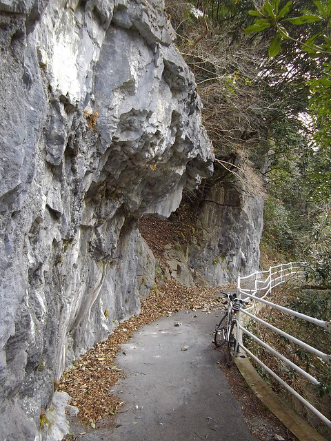 成羽トロッコ道