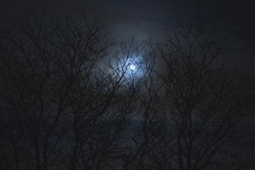 moon copy
