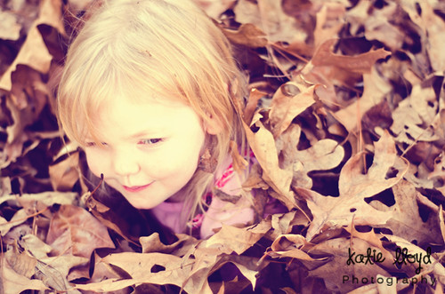 Rowan-in-Leaves-2---Autumn-