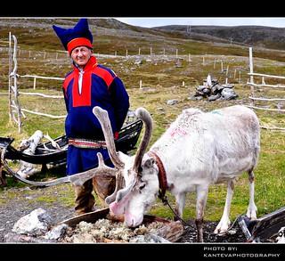 Ethnic minorities (Norway)