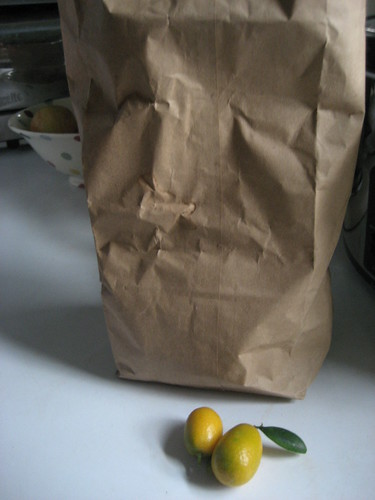 Big bag of kumquats