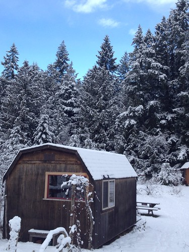 My cabin with snow