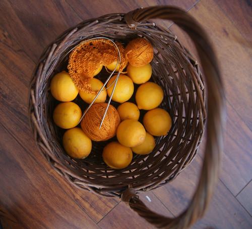 Knitting and sweet lemons