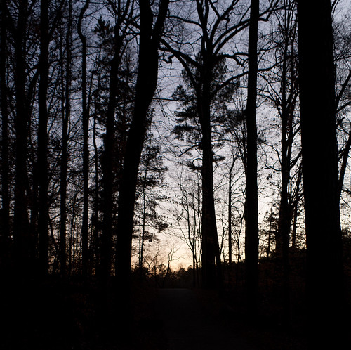 sunset canon eos rebel woods xti
